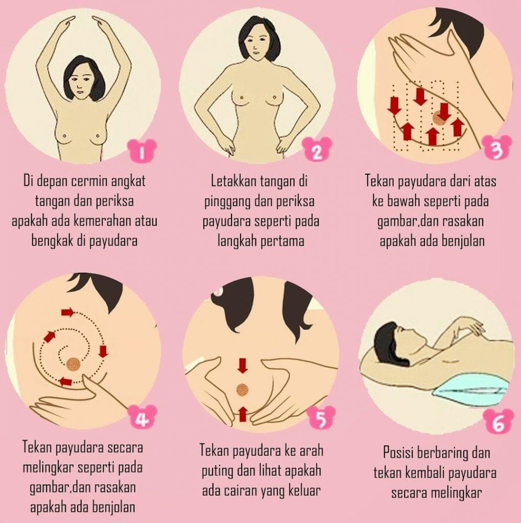 cara periksa payudara